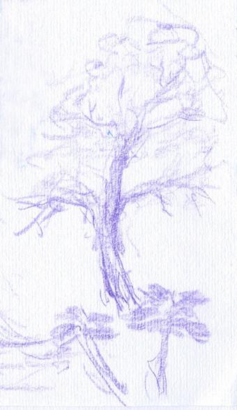 Sketch1305034431z