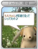 Sango018momo_asobi