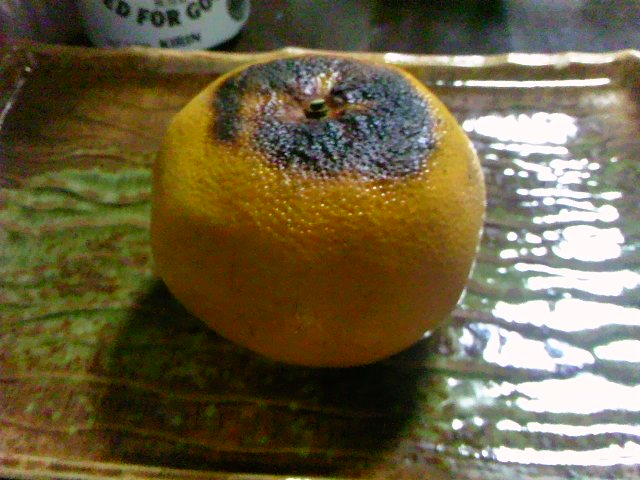 焼きみかんは旨いけどもポンカンは。〔写真〕